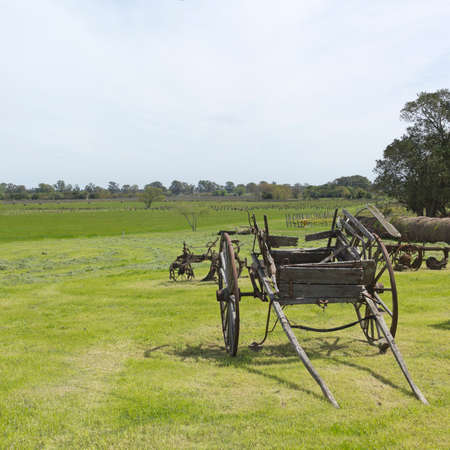 shaft: Ancient wooden carriage of a shaft, Uruguay, Latin america