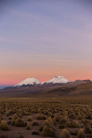 montane: Sunset in Andes. Parinacota and Pomerade volcanos. High Andean landscape in the Andes. High Andean tundra landscape in the mountains of the Andes.