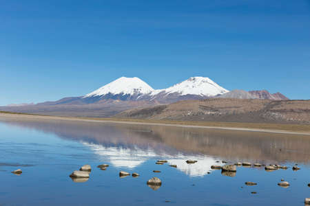 snowcapped: The snowcapped volcanoes Parinacota and Pomerane. Sajama National Park, on the border between Bolivia and Chile over 4500 meters. Range of the Andes.