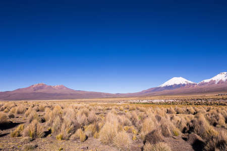 montane: High Andean tundra landscape in the mountains of the Andes. The weather Andean Highlands Puna grassland ecoregion, of the montane grasslands and shrublands biome. Stock Photo