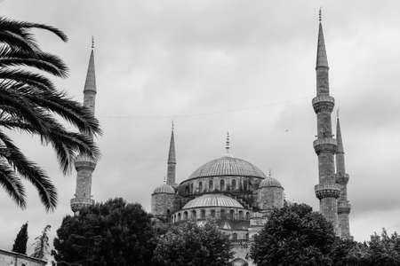 blue mosque: The Blue Mosque, (Sultanahmet Camii), Istanbul, Turkey. Monochromatic picture.