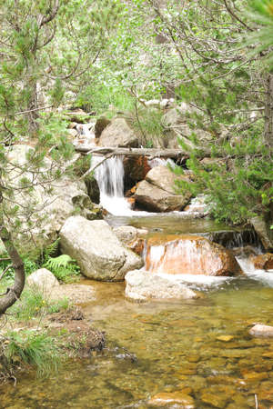 small creek inside the Aig�estortes National Park in the Catalan Pyrenees, Spain Stock Photo