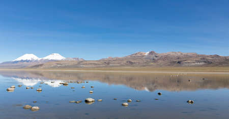 The snowcapped volcanoes Parinacota and Pomerane. Sajama National Park, on the border between Bolivia and Chile over 4500 meters. Range of the Andes.