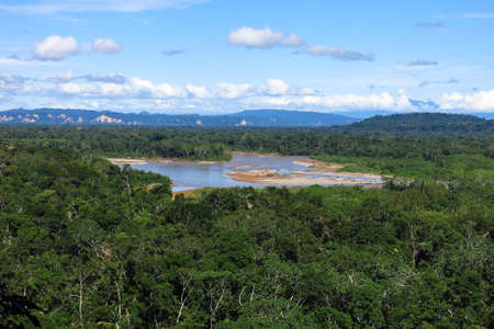 reached: Amazon forest in the Madidi National Park, BoliviaMadidi National Park can be reached from Rurrenabaque if you cross the Beni River with the small passenger ferry. Stock Photo