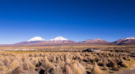 High Andean tundra landscape in the mountains of the Andes. The weather Andean Highlands Puna grassland ecoregion, of the montane grasslands and shrublands biome. Stock Photo