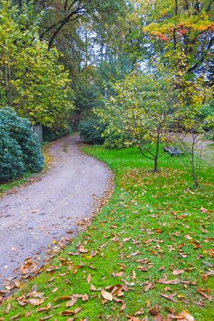 Germany, Hamburg, Autumn forest, path.  Autumn Impression from the Saxony forest near Hamburg, Germany