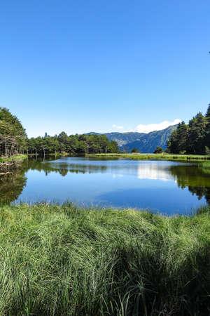 Panorama to Bassa de Oles. Aran valley in the Catalan Pyrenees, Spain Stock Photo