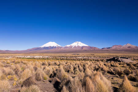 Bolivian panoramic: High Andean tundra landscape in the mountains of the Andes. The weather Andean Highlands Puna grassland ecoregion, of the montane grasslands and shrublands biome.