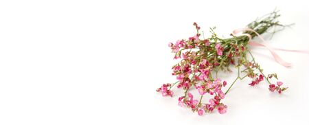 Bouquet of little pink flowers card background - space for text Stock Photo - 3814155