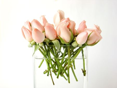 Little pink roses bouquet on vase -  white background