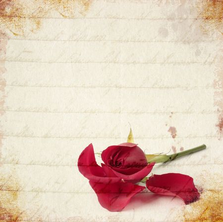 Red rose losing petals vintage card Stock Photo