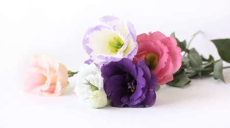 Bouquet of lisianthus flowers