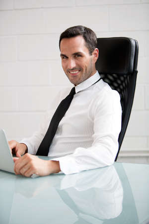 25 to 30 years old: Half length portrait of male businessman, smiling at camera and working with a laptop computer