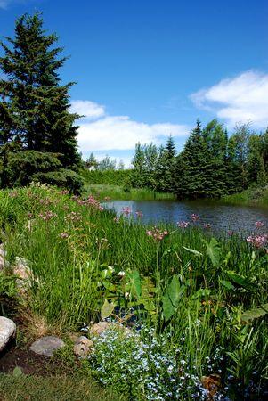 metis: Lake Landscape