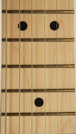 fret: strings and fret of elctric guitar