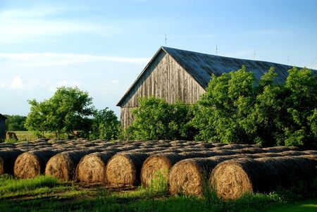Hay Bales stored outdoor at front of old wooden barn Stock Photo