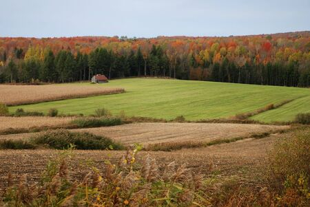lone isolated house in a field in autumn Stock Photo