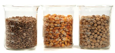 wheat, corn, soy seeds grain trio