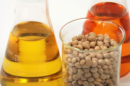 Ethanol oil and fuel produce by soy seeds  photo