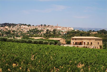 vineyard in Provence, France with  village on back Stock Photo