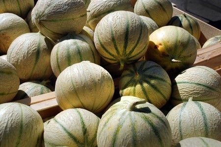 Cavaillon melon at the exterior market in provence