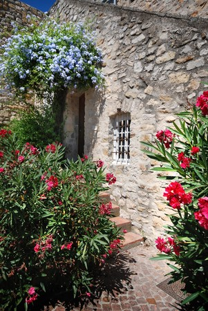 geranium color: House wall and window with Flowers in france