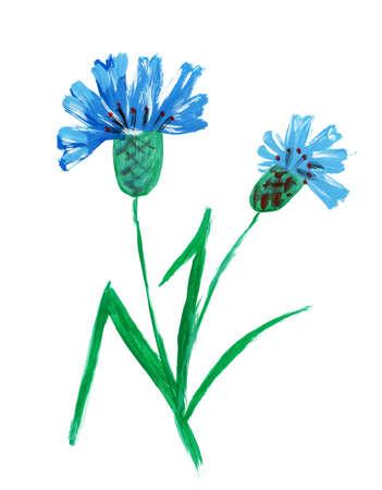 painterly: Painted watercolor cornflower