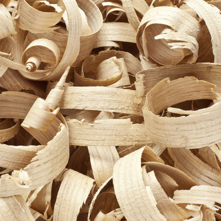 wood shavings: Wooden shavings in workshop on planks