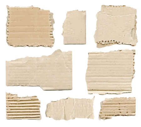wrinkled paper: Collection of brown torn paper pieces