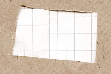 torn cardboard: Torn cardboard texture with squared paper.