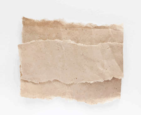 crumple: Torned vector brown note papers on white background