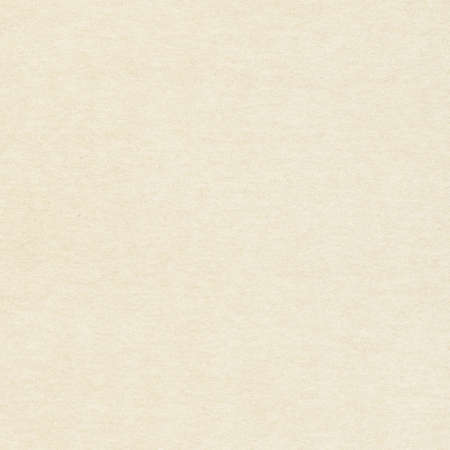 Light brown recycled paper texture with copy space