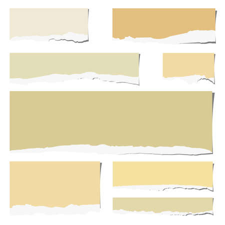 old page: Set of various colorful torn note papers  on white background.