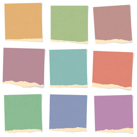 Set of various colorful recycled torn grainy note papers.
