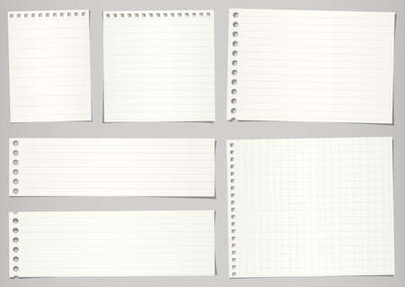 Set of torn notebook papers with lines and grid on gray background.