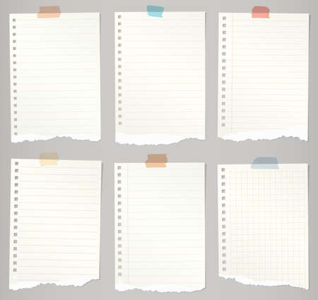 old notebook: Set of torn notebook papers with lines, grid and colorful adhesive tape.