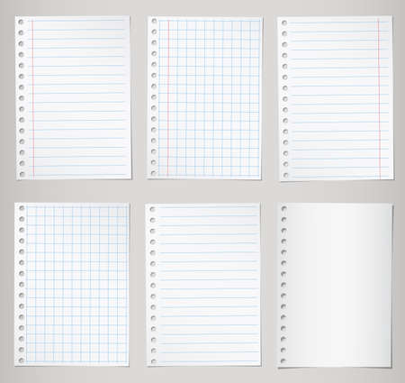 Set of notebook papers with lines and grid.
