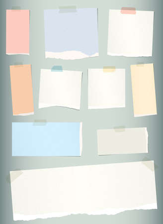 blank note: Pieces of torn colorful blank note paper on gray background.