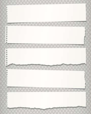 nota de papel: Los pedazos de papel de cuaderno rasgado blanco sobre fondo gris. Vectores