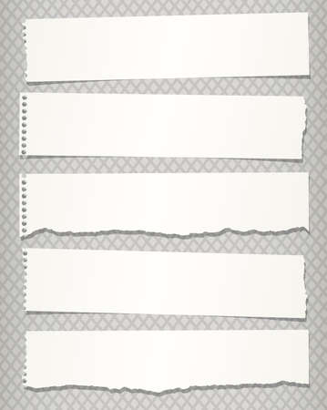 Pieces of white torn notebook paper on gray background.