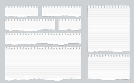 Pieces of torn white lined notebook paper on gray background.