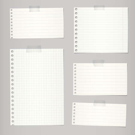 선 및 회색 배경에 격자 찢어진 된 노트북 논문의 집합입니다.