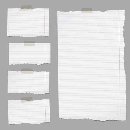 찢어진 된 흰색 줄 지어 노트북 종이 조각 회색 배경에 sticked.