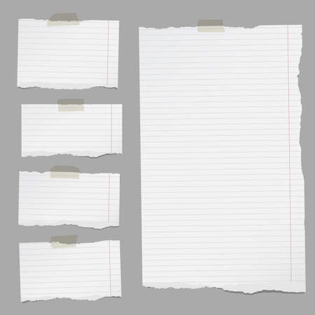 Pieces of torn white lined notebook paper sticked on gray background.