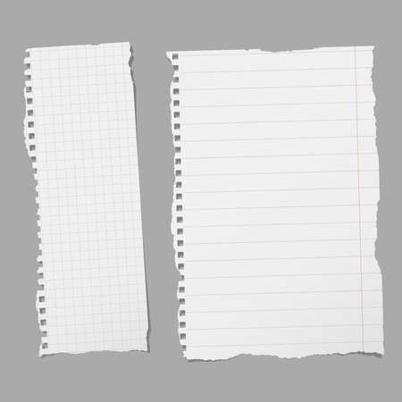 Pieces of torn white lined and squared notebook paper on gray background.