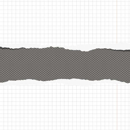 margin: Pieces of torn white squared notebook paper with margin and copy space sticked on gray background.