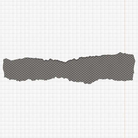 notebook paper background: Torn white squared notebook paper with margin and copy space, sticked on dark gray background.