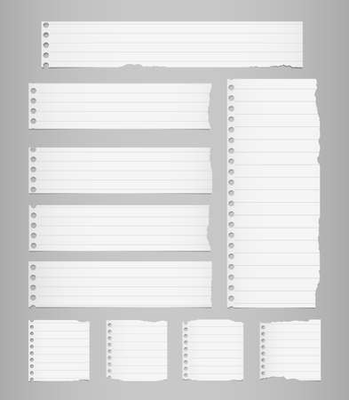 Pieces of torn white lined notebook paper are stuck on gray background.