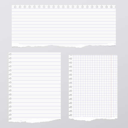Pieces of torn white lined, squared notebook paper are stuck on gray background. Stock Illustratie