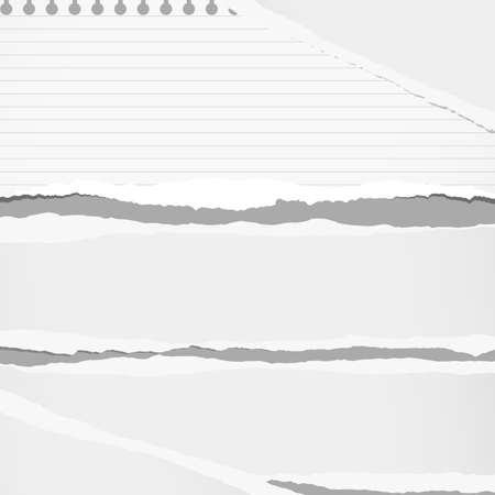 notebook paper background: Ripped white and ruled notebook paper sheet are stuck on gray background.
